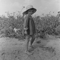 Child of farmer in cotton field, Lake Dick Project, Arkansas. Russell Lee, 1938.