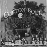 Store on Cotton Row, Front Street, Memphis, Tennessee. Marion Post Wolcott, 1940.