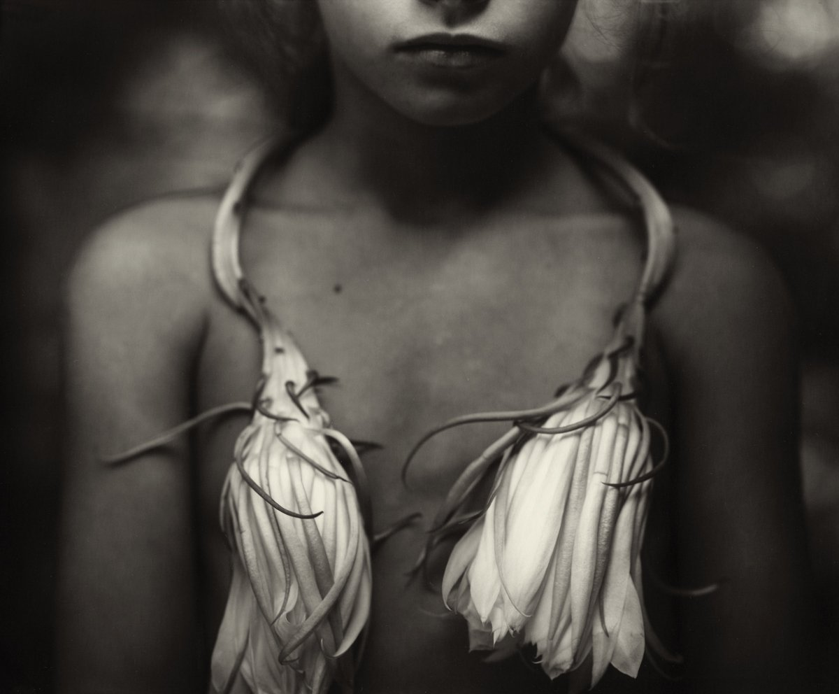 sally mann nudes