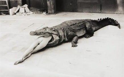 Helmut Newton - A Scene from Pina Bausch's Ballet, 1983 (Custom)