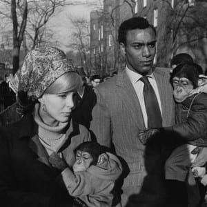 "GARRY WINOGRAND: ""The Animals and Their Keepers: Garry Winogrand and Photography After September 11th"""