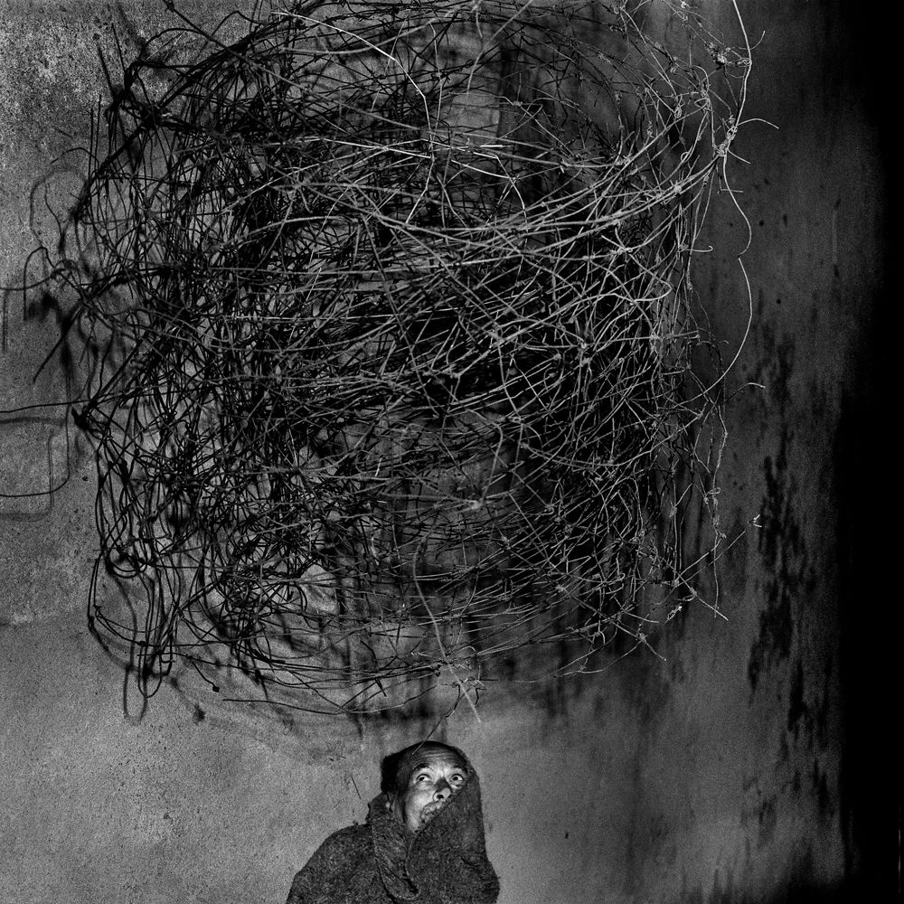 00Roger_Ballen_Twirling_wires_2001