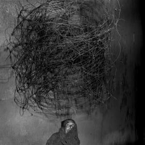 """ROGER BALLEN: """"Shadow Chamber"""" (2007)"""