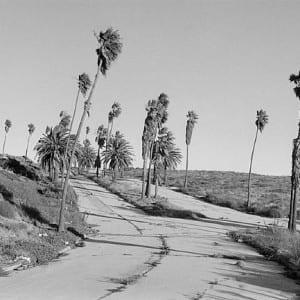 "HENRY WESSEL: ""Vista Del Mar"" (1995)"