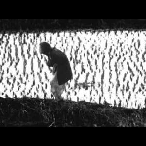 "ASX.TV: Eikoh Hosoe – ""Theatre of Memory"" (2011)"