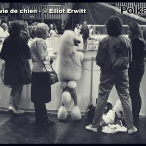 "ASX.TV: Elliott Erwitt – ""Interview with Polka"" (2011)"