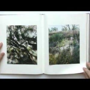 """ASX.TV: Cuny Janssen – """"My Grandma Was A Turtle"""" (2011)"""
