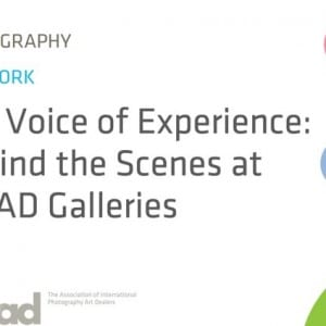 "ASX.TV: AIPAD – ""The Voice of Experience: Behind the Scenes at AIPAD Galleries"" (2011)"