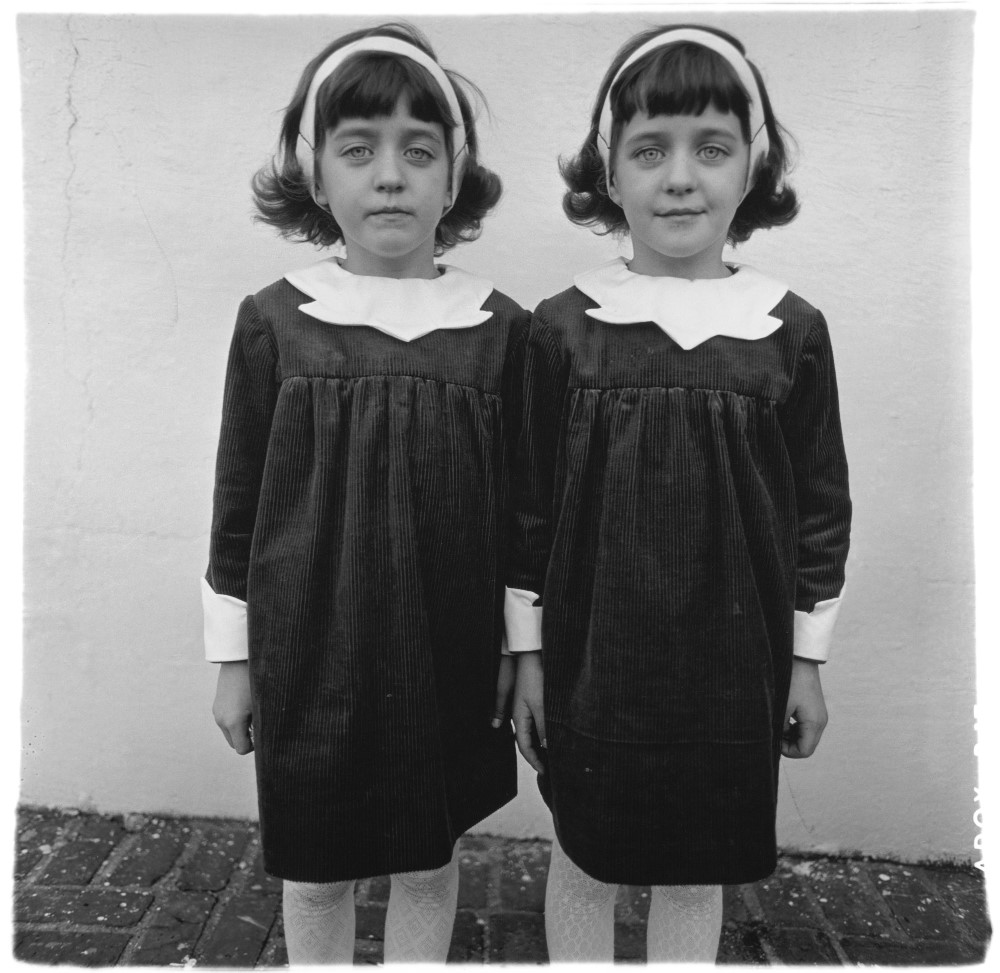 identical-twins-roselle-nj-1967-c-the-estate-of-diane-arbus (Custom)
