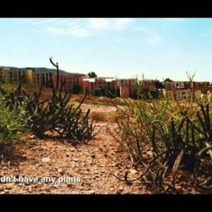 "ASX.TV: Koji Onaka – ""Horse & Cactus"""