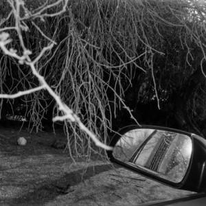 """REVIEW: Robert Frank – """"Park/Sleep"""" (2013)"""