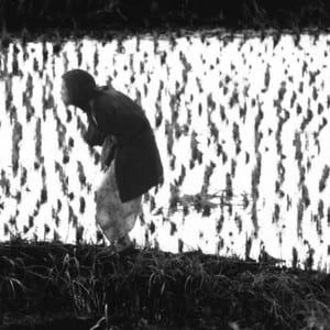 "ASX.TV: Eikoh Hosoe – ""Photographer"" (2011)"