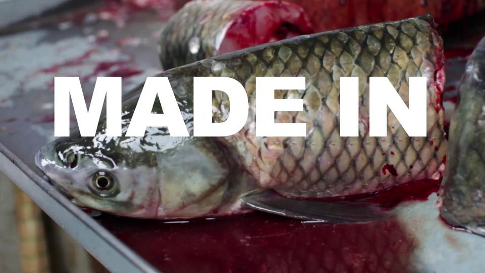 "ASX.TV: Cristina de Middel – ""Made In"" (2012)"