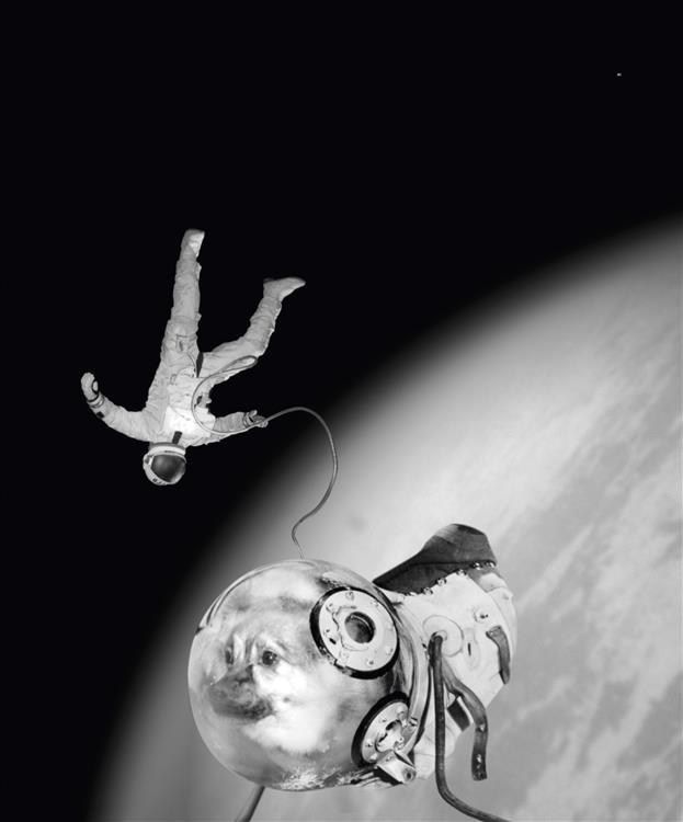 1997-sputnik-chien (Custom)