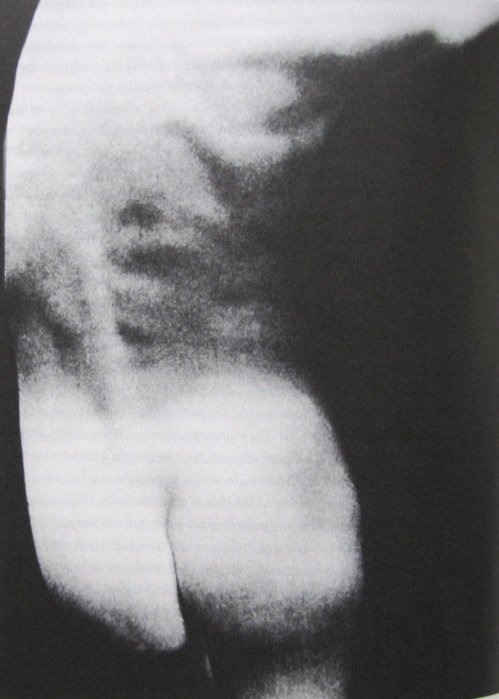 51_Sherrie Levine_Untitled After Edward Weston_1980