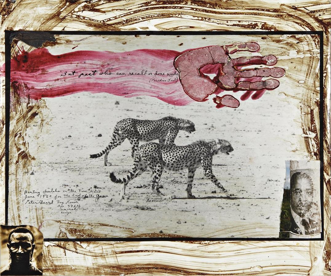 Montauk Andy Warhol And His Fascinating Neighbor Peter